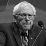 Who Won: Bernie or Hillary?